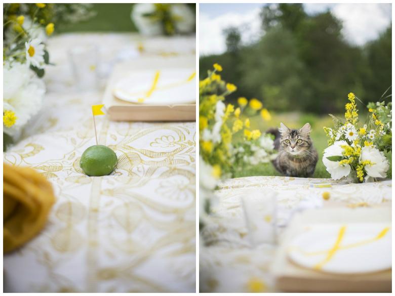 L&T_picnic champêtre en jaune et blanc_03
