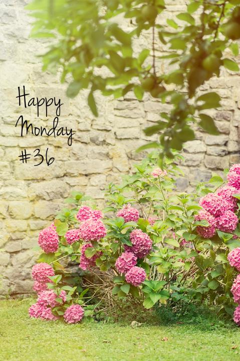 L&T_happy monday 36_fleurs