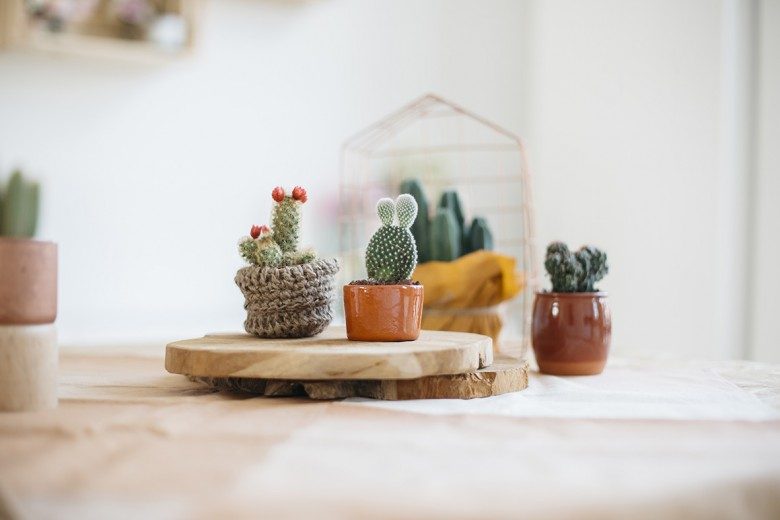 Lovetralala_shooting inspiration jolie table bohème cactus_08